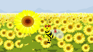 transcript: Honey Bee My Valentine
