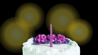 transcript: May your birthday wishes come true this year.