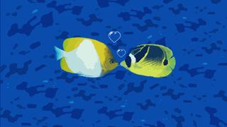 transcript: I love you even underwater!