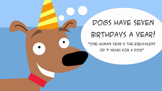 transcript: Gee Honey, the dog's sure acting weird...