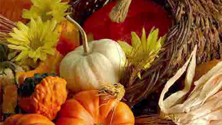 transcript: Be thankful for pleasant days
