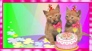 Birthday Wishes Twins cards ideal for friends and family