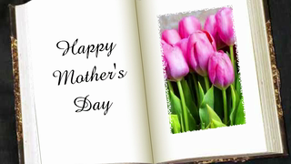 transcript: All about mom