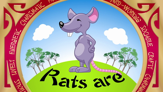 transcript: Year of the Rat Rats are Innovative Ambitious and very Sociable They are always the life of the party They are also very hard-working. Have a Happy (and prosperous) Birthday