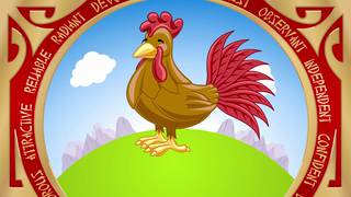 transcript: Year of the Rooster Roosters are Punctual Confident and Bright They are accurate observers  They are always well-dressed and groomed. Have a Happy (and glamorous) Birthday