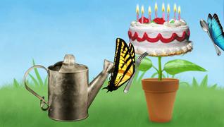 transcript: 생일 축하 해요