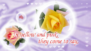 transcript: Sparkling roses just for you, to show you that my love is true  In yellow and pink, they come to say, you're more special to me, each passing day. Happy Valentine's Day